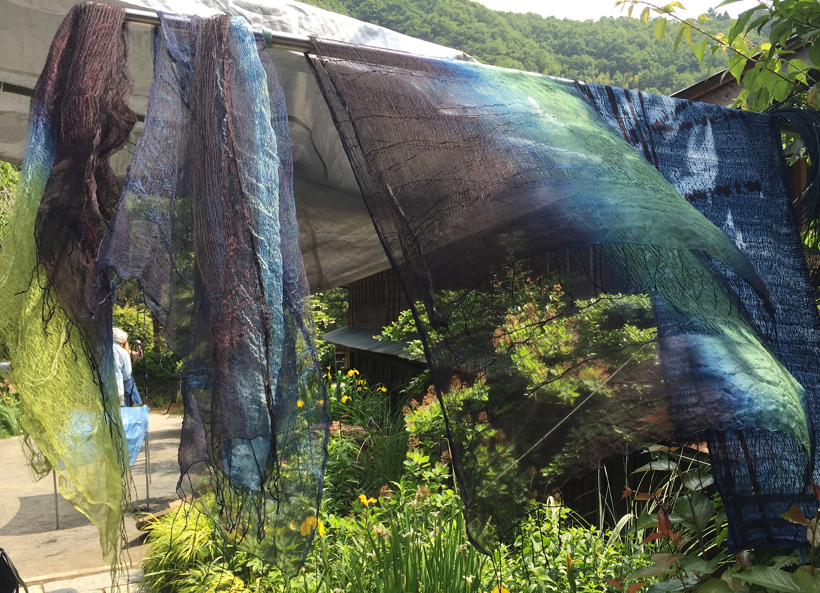 Silks drying in sun 2